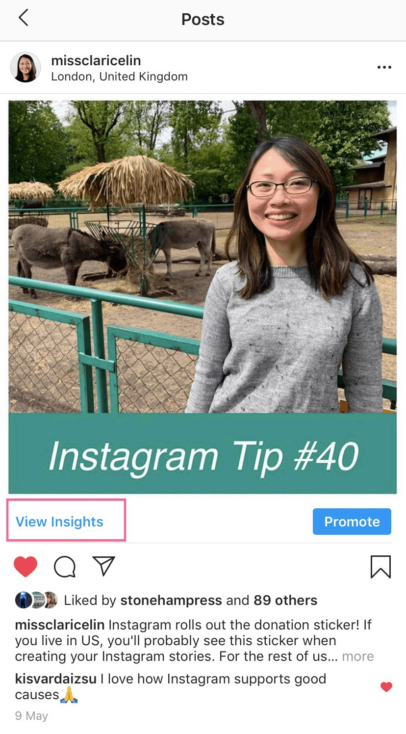 Instagram Post View Insights