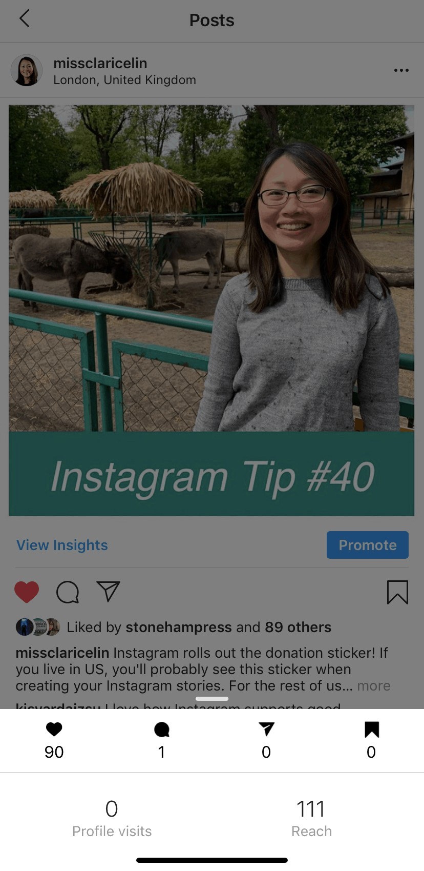 Instagram Post Partial Insights